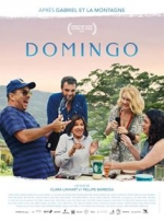 Affiche du film : DOMINGO